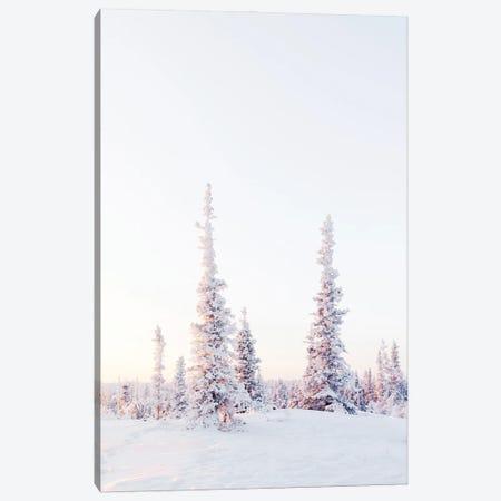 Pink Pine Trees Canvas Print #KMD116} by Karen Mandau Art Print
