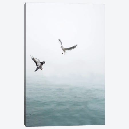 Seagulls Flying Over The Ocean Canvas Print #KMD136} by Karen Mandau Canvas Art Print