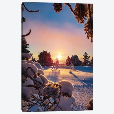Snow Landscape At Sunset Canvas Print #KMD139} by Karen Mandau Canvas Art
