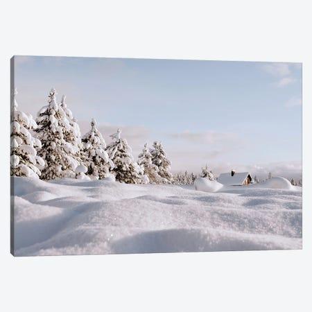 Snow Landscape Canvas Print #KMD140} by Karen Mandau Art Print