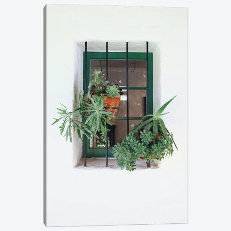 Window With Plants Canvas Print #KMD161} by Karen Mandau Canvas Art Print