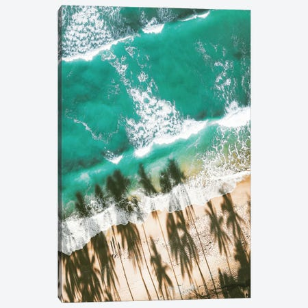 Aerial Beach With Palm Shadows Canvas Print #KMD2} by Karen Mandau Art Print