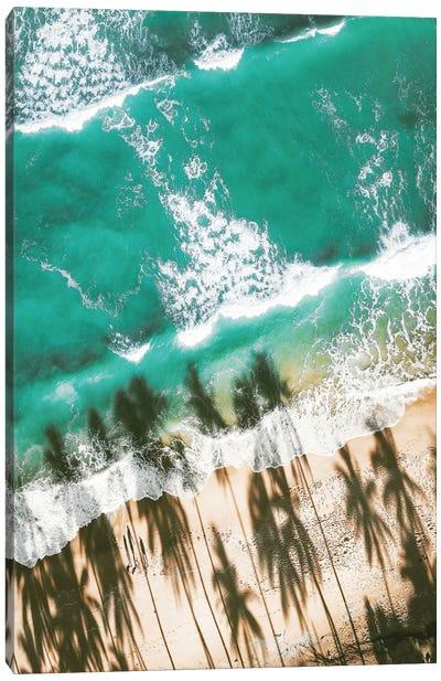 Aerial Beach With Palm Shadows Canvas Art Print
