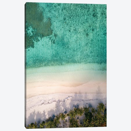 Aerial Beach With Palm Trees Canvas Print #KMD3} by Karen Mandau Art Print