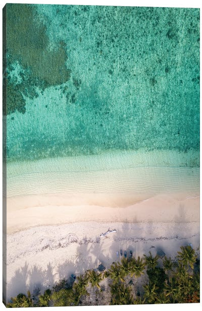Aerial Beach With Palm Trees Canvas Art Print