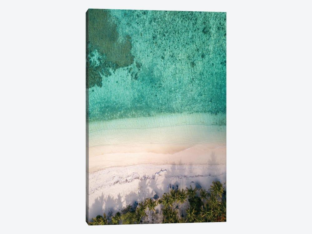 Aerial Beach With Palm Trees by Karen Mandau 1-piece Canvas Wall Art