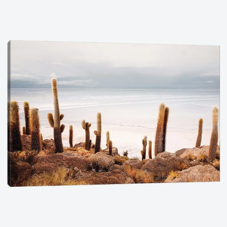 Coastal Cactus Landscape Canvas Print #KMD44} by Karen Mandau Canvas Wall Art