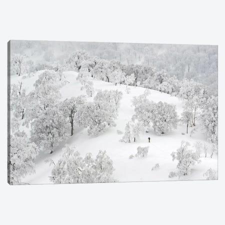 All White Winter Landscape With A Skier Canvas Print #KMD9} by Karen Mandau Art Print