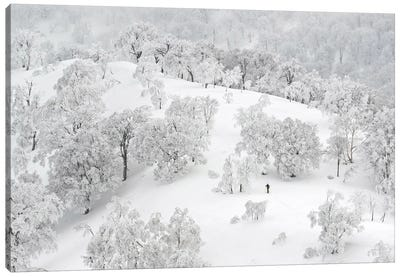 All White Winter Landscape With A Skier Canvas Art Print