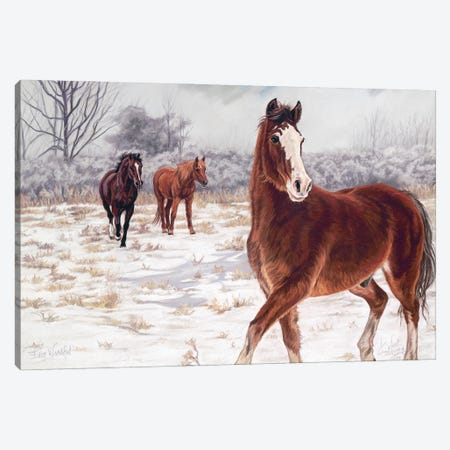 Ever Watchful Canvas Print #KME50} by Kim McElroy Canvas Art Print