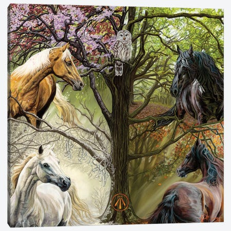 Horses Of The Four Seasons Canvas Print #KME80} by Kim McElroy Canvas Wall Art