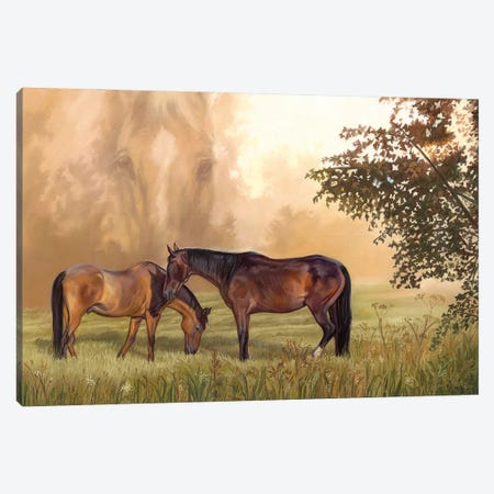 Mary's Pasture Canvas Print #KME95} by Kim McElroy Canvas Wall Art