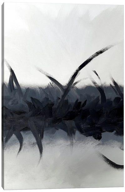 Bliss In Black Canvas Art Print