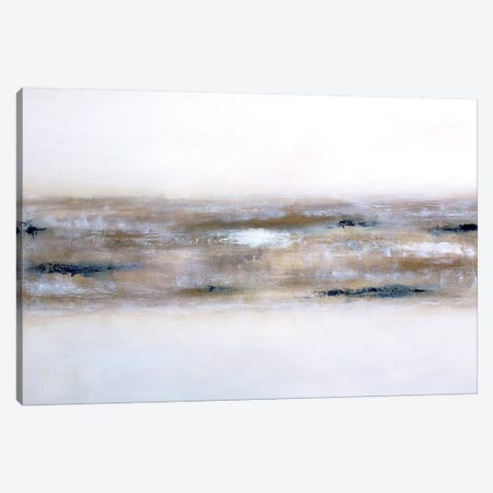 Earthly Textures Canvas Print #KMH64} by KR MOEHR Canvas Artwork