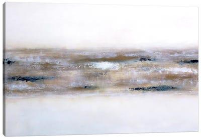 Earthly Textures Canvas Art Print
