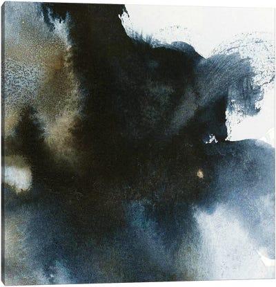 Galore Canvas Art Print