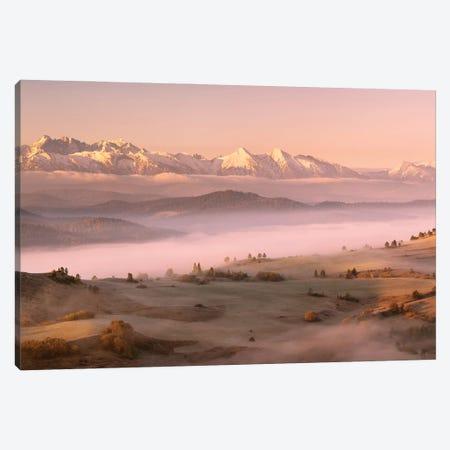 Fog Tatra Canvas Print #KMI3} by Krzysztof Mierzejewski Canvas Artwork