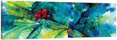 Ladybug I Canvas Art Print
