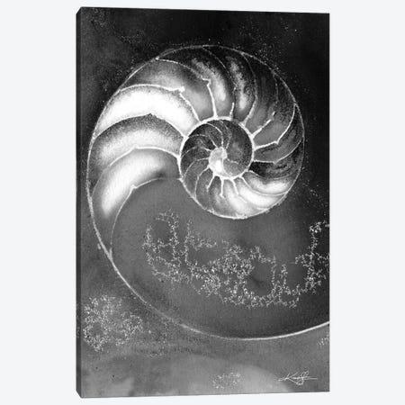 Nautilus Shell IIIB Canvas Print #KMS278} by Kathy Morton Stanion Art Print