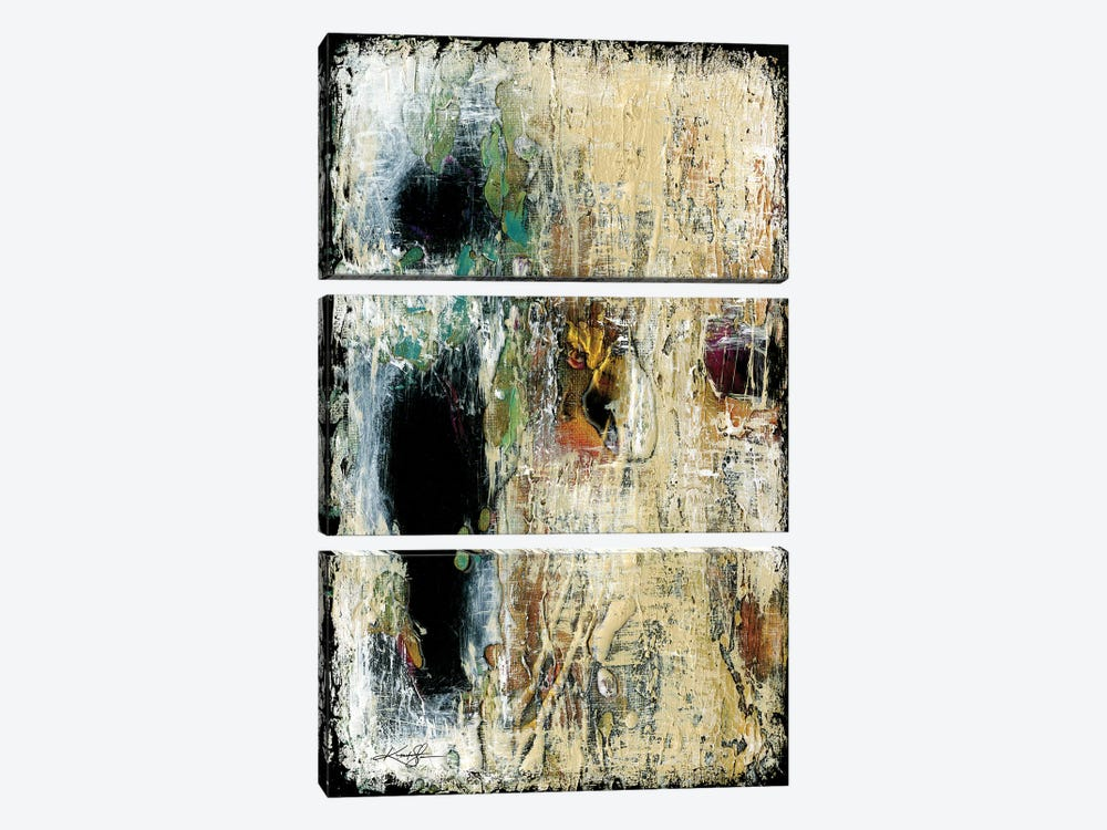 Mysterious Encounters I by Kathy Morton Stanion 3-piece Canvas Art