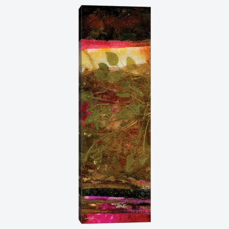 Nature's Abstraction II-II Canvas Print #KMS376} by Kathy Morton Stanion Art Print