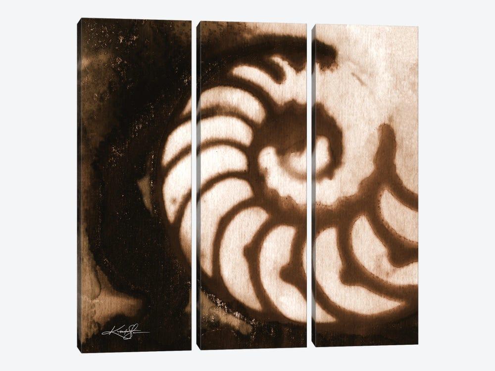 Sea Jewels I-IV by Kathy Morton Stanion 3-piece Canvas Print