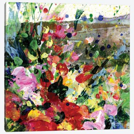 Meadow Dreams XV Canvas Print #KMS64} by Kathy Morton Stanion Art Print