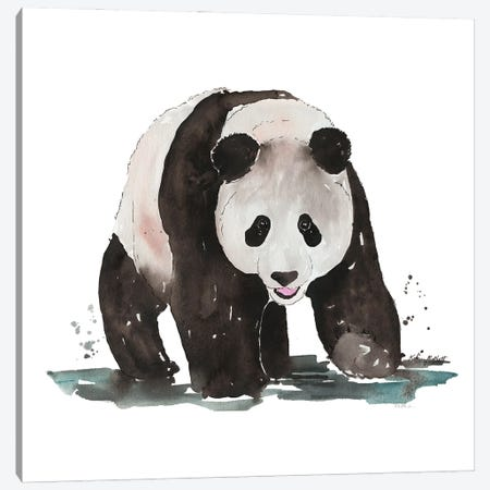 Giant Panda Canvas Print #KMT68} by Kelsey McNatt Canvas Art Print