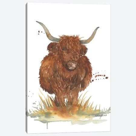 Highland Cow Canvas Print #KMT75} by Kelsey McNatt Canvas Print