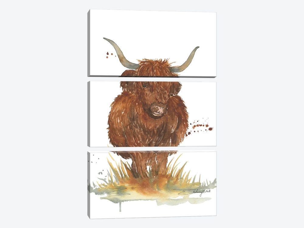 Highland Cow by Kelsey McNatt 3-piece Art Print