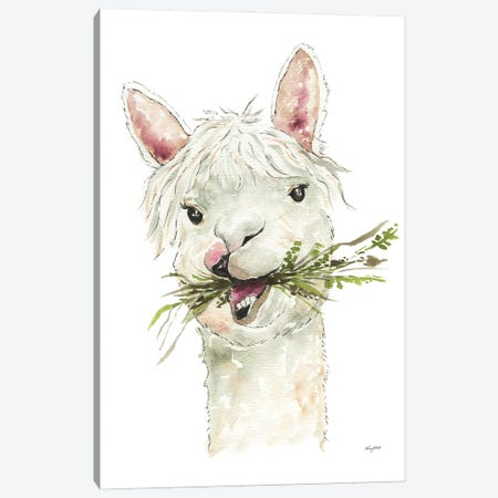 Llama Canvas Print #KMT85} by Kelsey McNatt Canvas Art