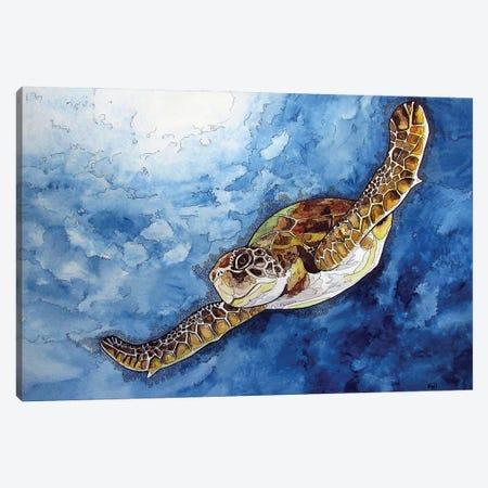 Gliding Sea Turtle Canvas Print #KMW12} by Kim Winberry Art Print