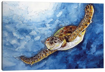 Gliding Sea Turtle Canvas Art Print