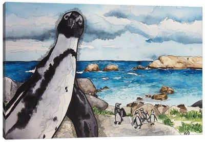 African Penguins Canvas Art Print