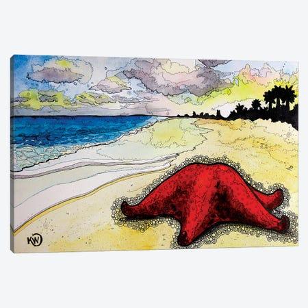 Bahama Sea Star Canvas Print #KMW24} by Kim Winberry Canvas Print