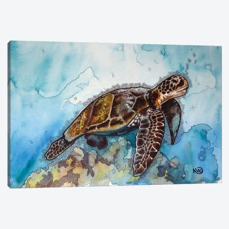 Floating Sea Turtle Canvas Print #KMW27} by Kim Winberry Art Print