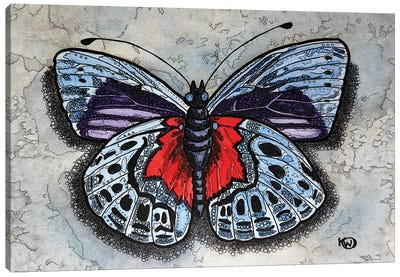 Blue/Red Butterfly Canvas Art Print