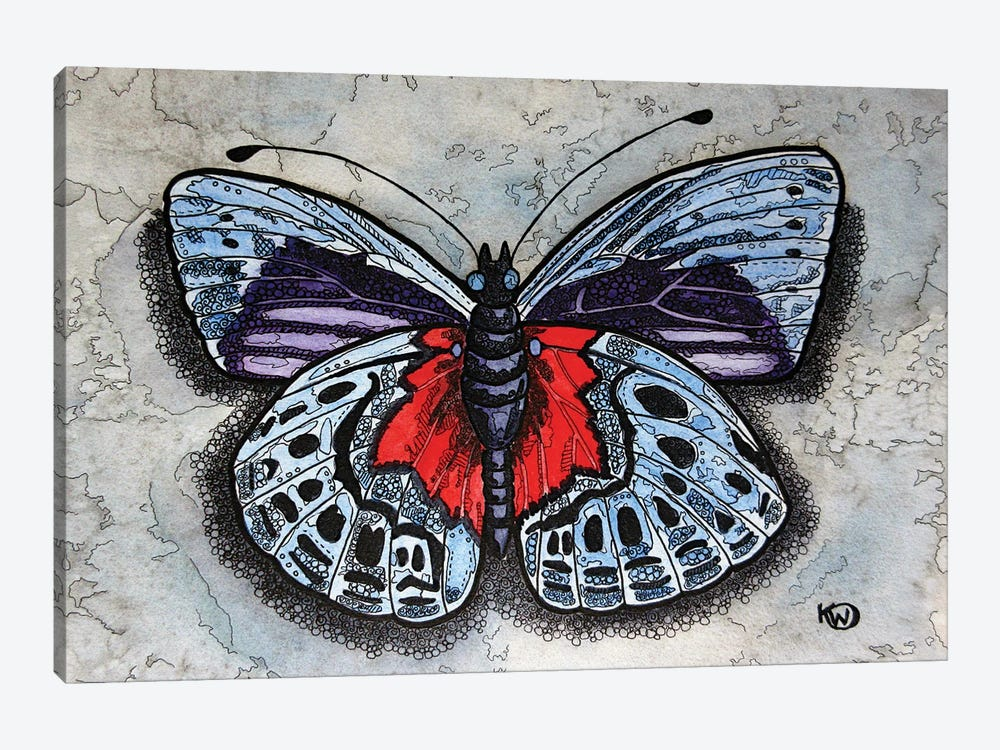 Blue/Red Butterfly by Kim Winberry 1-piece Canvas Wall Art