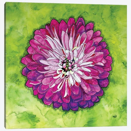 Pink Dahlia Canvas Print #KMW36} by Kim Winberry Canvas Artwork