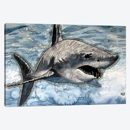 Mako Shark Canvas Print #KMW40} by Kim Winberry Canvas Wall Art