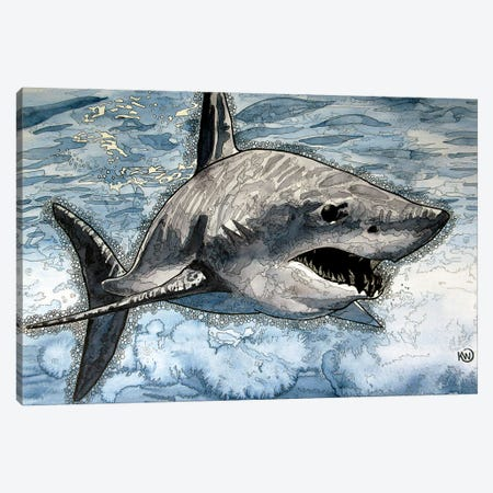 Mako Shark Canvas Print #KMW40} by Kim Winberry Canvas Wall Art