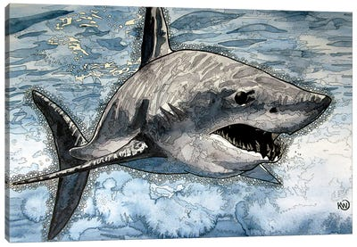 Mako Shark Canvas Art Print