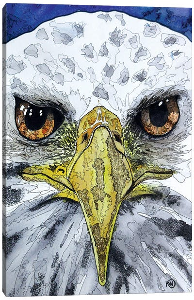 Eagle Eyes Canvas Art Print