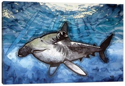 Hammerhead Shark Canvas Art Print