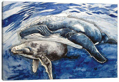Humpback And Her Calf Canvas Art Print