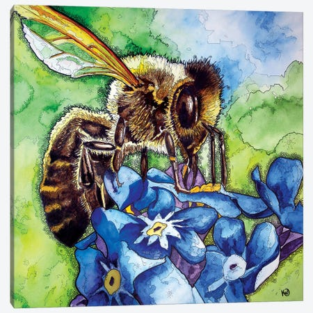 Honeybee Canvas Print #KMW61} by Kim Winberry Canvas Art