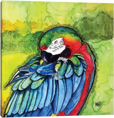 Parrot II Canvas Art Print