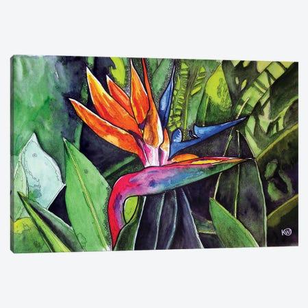 Bird Of Paradise II Canvas Print #KMW65} by Kim Winberry Canvas Print