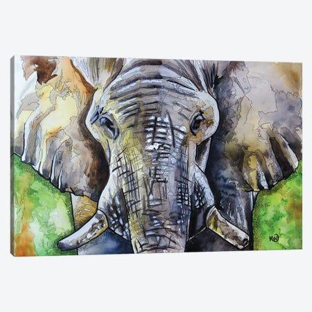 Bull II Canvas Print #KMW69} by Kim Winberry Canvas Art