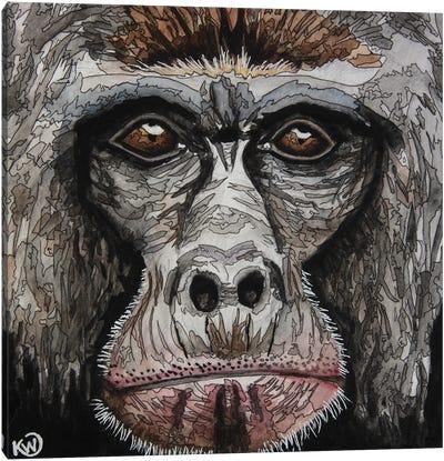 Gorilla II Canvas Art Print